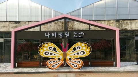 나비1.jpg