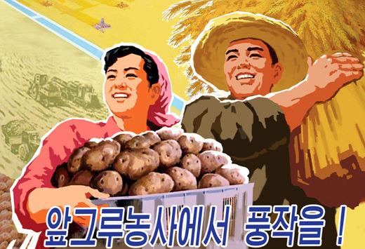 북한 농업'선전화'(포스터).jpg