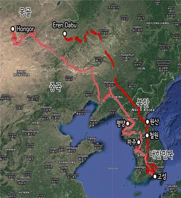 몽골-경남-고성군이-방사한-독수리들의-비행-경로-사진-고성군-제공.jpg