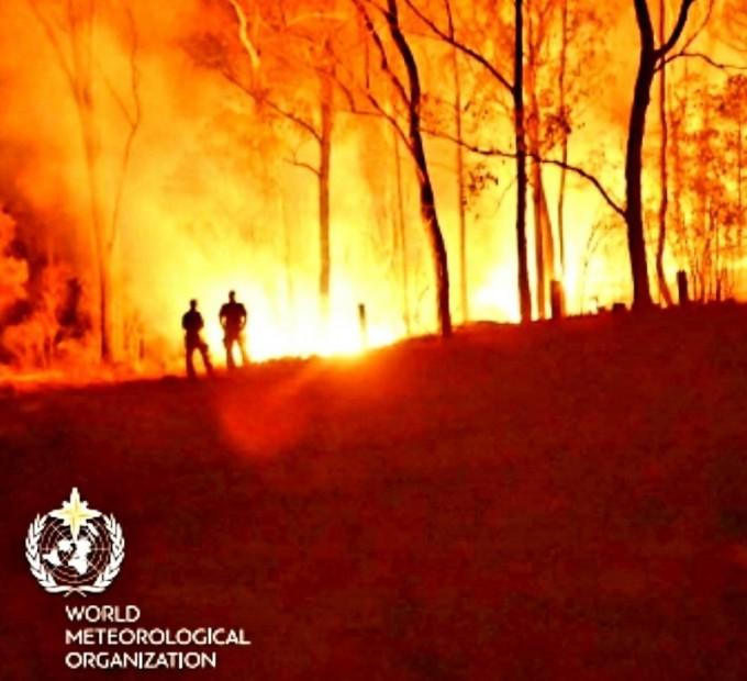 세계기상기구-긴급보고서-극한의-여름-산불-사진.jpg
