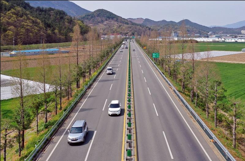 국도25호 밀양대로 가로수 명품 도로 탄생