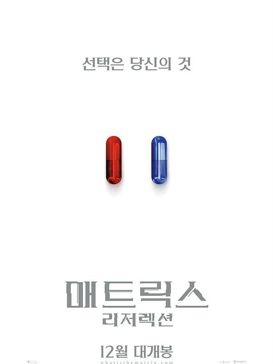 [영화정보] 『매트릭스: 리저렉션』, '전설이 돌아온다', 12월 개봉 확정.