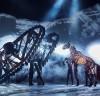 영국 국립극장 '워호스' 내한공연, 4일 첫 티켓 오픈