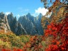 [청로 이용웅 칼럼] 八道江山의 玲瓏(영롱)한 丹楓과 <그리운 金剛山>