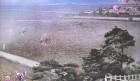 [청로 이용웅 칼럼] 북한의 선경팔경(先軍八景) 한드레벌의 지평선(地平線)