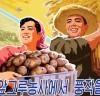 [청로 이용웅 칼럼] 김일성의 평양남새과학연구소와 북한의 '식의주(食衣住)'