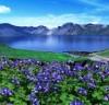 [청로 이용웅 칼럼]백두산(白頭山)·백두산 밀영(密營)·백두산은 활화산(活火山)